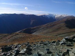 افق از فراز چمن 1